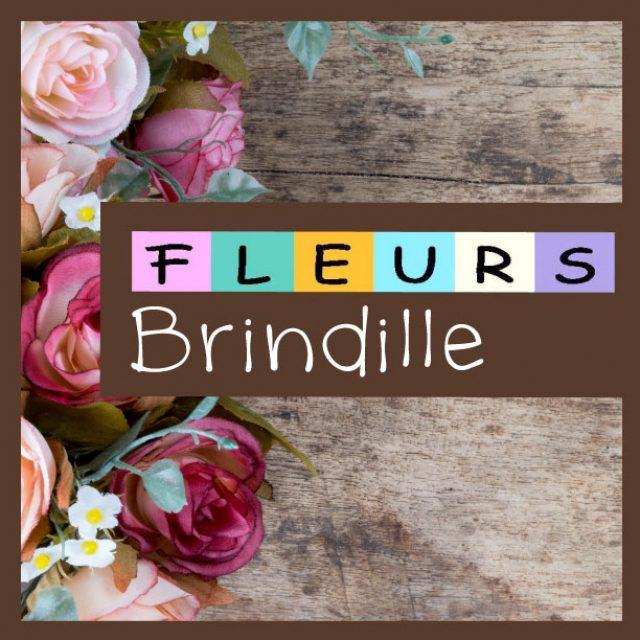 BRINDILLE FLEURS